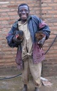 Chickens for Burundi